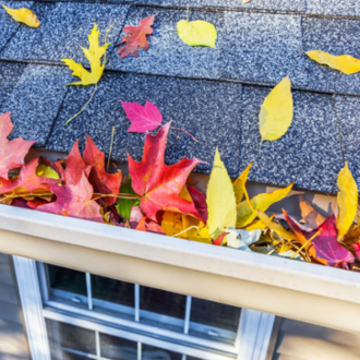 colorful leaves in gutter on roof